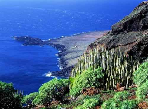 upload/305_Tenerife-Travel-Senior-4.jpg
